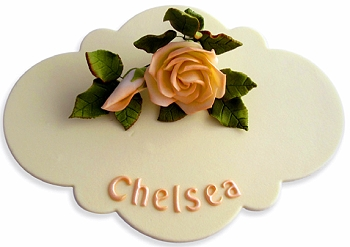 GUM PASTE NOVELTY PLAQUE CUTTER SET