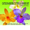CATTLEYA ORCHID CUTTERS & VEINER SET