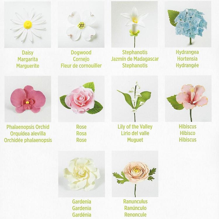 Gum Paste Flower Cut Outs Set