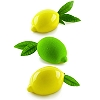 MULTIFLEX LIMONE & LIME MOLD