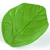 SUGARFLEX SILICONE LEAF PRESS - ROSE LEAF