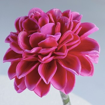 DAHLIA PLUNGER CUTTERS WITH FLOWER FORMERS